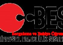 BES Sorgulama ve Bakiye Öğrenme İşlemi Nasıl Yapılır?